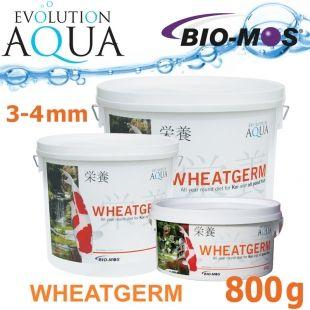 EA Wheatgerm, celoroční krmivo pro malé a menší rybky, velikost 3-4 mm, balení 800g Evolution Aqua