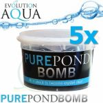 Pure Pond BOMB 5x V BACTERIAL POND LIQUID