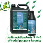 Lactic Acid Bacteria 5000 ml - přirodní probiotika, na 100-500m3, bakterie pro rovnováhu a podporu i