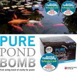 PURE POND BOMB V BACTERIAL POND LIQUID, ČISTÍCÍ A STARTOVACÍ BAKTERIE PRO BIO-ROVNOVÁHU V JEZÍRKU, FUNGUJÍCÍ PO CELÝ ROK OD 4 °C, 1 KS PRO 10-80 M3 Evolution Aqua